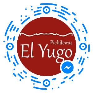 messenger_code_309578219070647